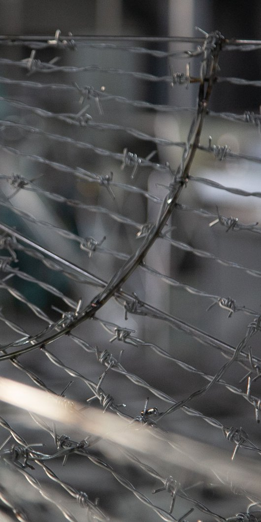Detail of steel barbed wire sculpture, Exile, by Majdulin Nasrallah