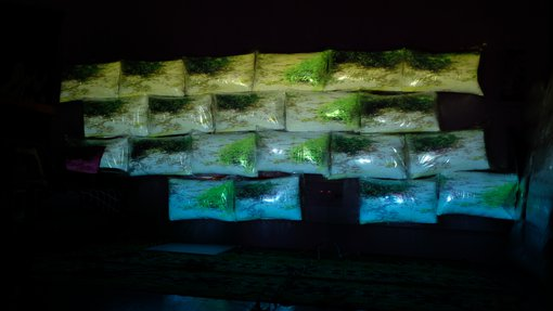 """صورة مأخوذة من عرض لفيديو """"حقائق مجزأة"""" الذي أخرجتها هدير عمر في مطافئ، الدوحة."""