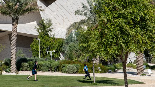 Heritage garden with native plants and trees surrounding the National Museum of Qatar