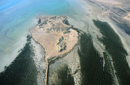 An aerial view of the Jazirat bin Ghannam Island surrounded by mangroves